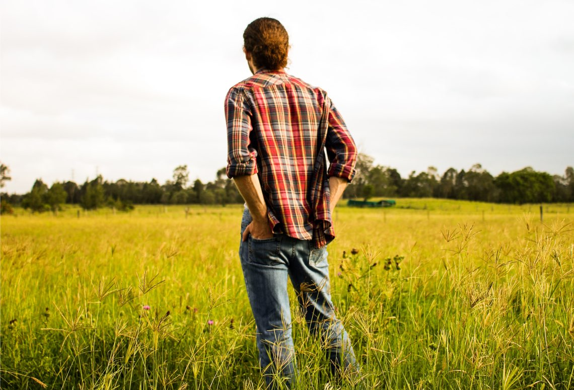 Il bando dedicato ai giovani agricoltori e alle nuove aziende agricole